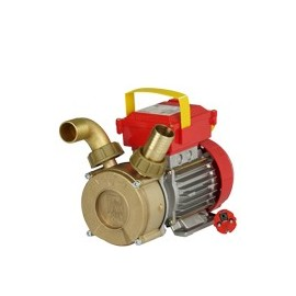 Electric pump ROVER 35 CE