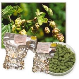 Granuliuotų apynių HALLERTAU PERLE 50g Alfa: 8%