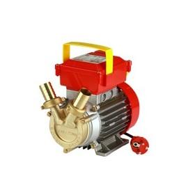 Elektriline pump on ROVER 25 CE