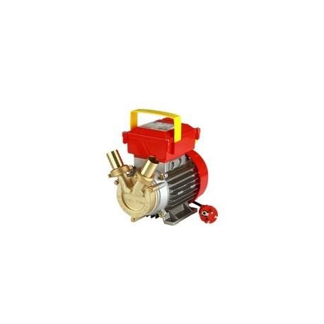 Elektriskais pumpis ROVER 25 CE
