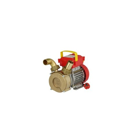 Elektriline pump on ROVER 35 CE