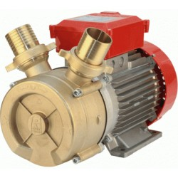 Electric pump ROVER BE-T 50