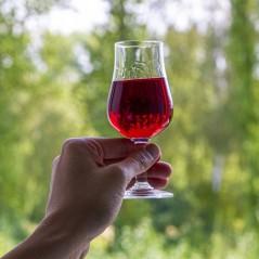 Dzidrinātājs baltajiem un rozā vīniem Klarowin 100g KLAROWIN