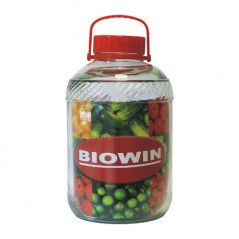 Glass jar with plastic cap and handle 18L